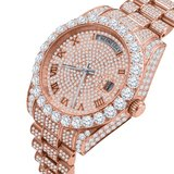 CLOXSTAR Stainless Steel Full Iced Out Watch R ROS_